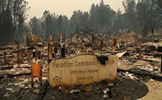 تصاویر دیده نشده از جهنم پارادایس+فیلم