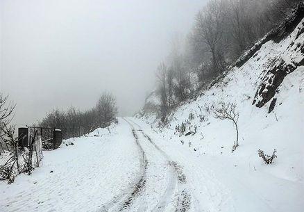چند نفر در برف و کولاک کردستان گرفتار شدند؟