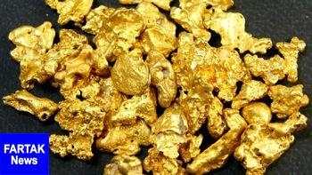 صعود قیمت طلا به سقف ۶ هفته اخیر