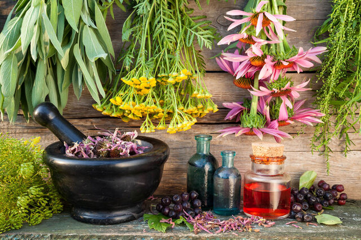جلوگیری از گرمازدگی با نوشیدنیهای خنک طب سنتی