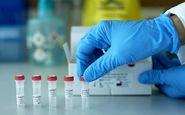 دستیابی محققان ایتالیایی به روش درمان کویید-۱۹ صحت ندارد