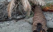 بارانهای موسمی در بشاگرد راه ارتباطی چندین روستا را مسدود کرد / قطع آب و برق