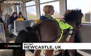 کره اسبی که صاحب کمبینایش را سوار مترو میکند