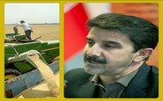 تمدید مهلت تحویل گندم تولیدی کشاورزان به مراکز خرید