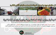 نمره قبولی برای معاونت خدمات شهری شهرداری تهران در مقابله با کرونا