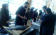 اولین نمایشگاه دستاوردهای فناورانه دانشجویی دانشگاه صنعتی برگزار شد