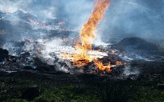 سوزاندن شبانه ضایعات در بهارستان + فیلم