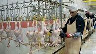 سند، حقوق 70 میلیون تومانی ناظران شرعی واردات مرغ از ترکیه