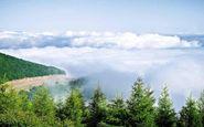 گشتی در جنگل ابر در اولین روز پاییز