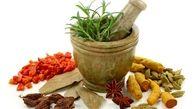 ۳ گام اساسی وزارت بهداشت برای احیای طب سنتی