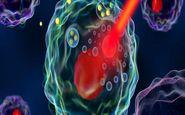 از بین بردن سلولهای سرطانی با گرما درمانی