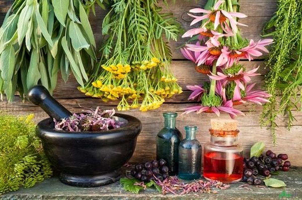 آشنایی با بایدها و نبایدهای طب سنتی در فصل زمستان