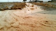 بارندگی در خراسان جنوبی موجب آبگرفتگی معابر شد