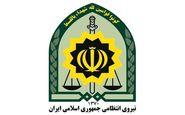 واکنش پلیس به ویدیوی درگیری با یک دختر جوان در تهرانپارس