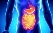 ارائه جدیدترین دستاوردهای علمی بیماریهای التهابی روده در رشت