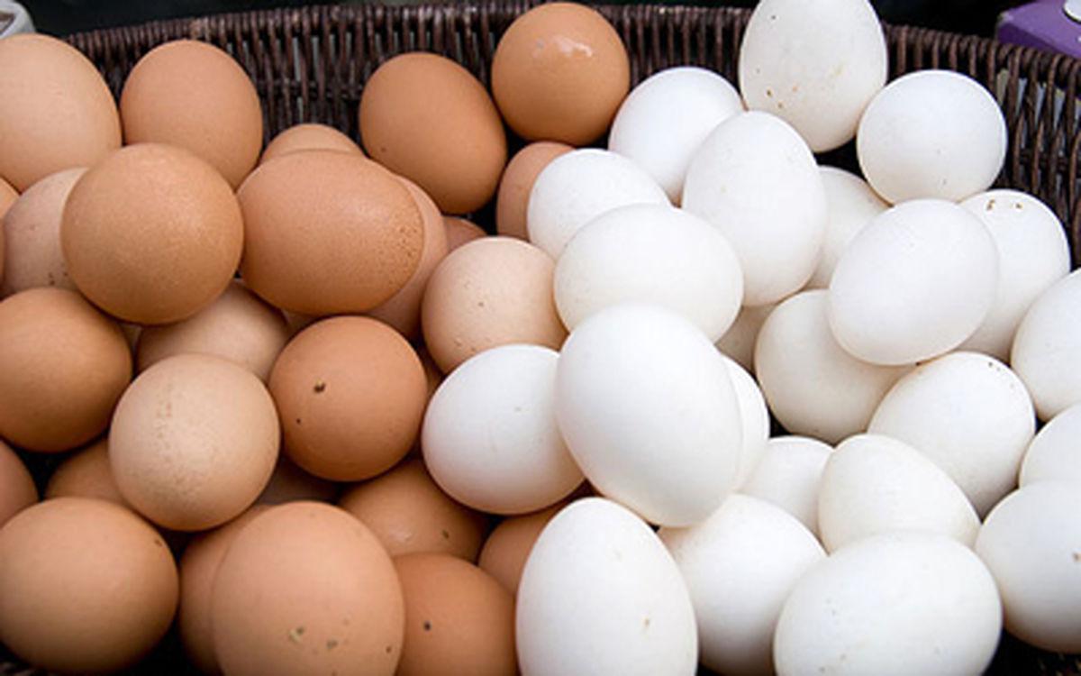آخرین وضعیت شیوع آنفولانزای حاد پرندگان/ عرضه تخم مرغ های غیر بهداشتی صحت دارد؟