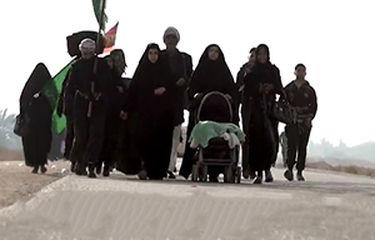 پیادهروی ۲۰ ساعته مسیر نجف تا کربلا توسط بانوی لبنانی