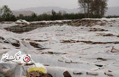 خسارت وارده به زراعت استاد اصفهان