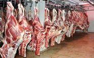 هشدار در خصوص پیشگیری از  تب کریمه کنگو/ شهروندان گوشت مورد نیاز خود را از مراکز معتبر خریداری نمایند
