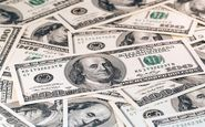 چرا قیمت دلار ارزان شد؟ قدرتنمایی بانک مرکزی تلاش آمریکاییها را خنثی کرد