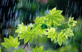 جمعه 22 شهریور/پیش بینی بارش پراکنده در مازندران