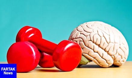 ورزش، راهی فعال برای تنظیم اکسیژن رسانی مغزی