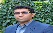  پیش بینی کشت ۴۱ هزارهکتار نخود بهاره در شهرستان کرمانشاه