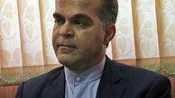 بیش از 310 کیلوگرم کله پاچه و آلایش غیربهداشتی در کرمانشاه کشف و معدوم شد