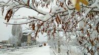 تخمین بارش برف 20 تا 70 سانتیمتری در جلگه گیلان