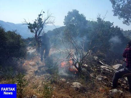 """مهار آتش سوزی مراتع و جنگلهای """"طسوج"""" چرام پس از یک شبانه روز تلاش"""