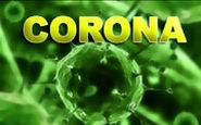 راهکارهای سازمان بهداشت جهانی برای پیشگیری از ابتلا به ویروس کرونا