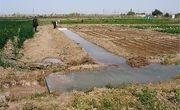 زمین به فارغالتحصیلان رشته کشاورزی در قم واگذار میشود