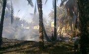 آتش به جان نخلستان های بزمان افتاد