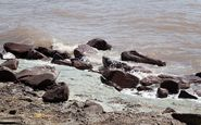 وسعت دریاچه ارومیه ۲۳ کیلومتر افزایش یافت