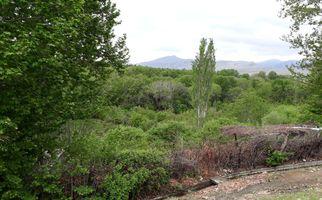 خانه باغهای دلفریب و زبیا و پارک دیدنی معلم صحنه به روایت تصویری