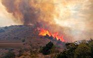 سیلی سرخ آتش بر دامان طبیعت پلدختر