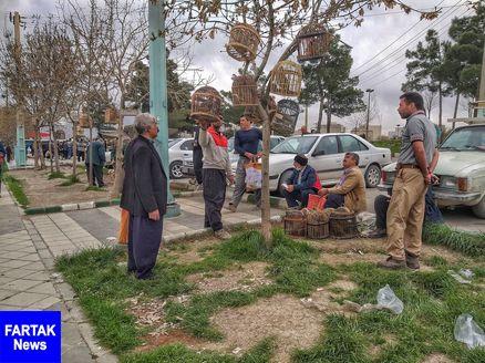 بازار پرندگان کرمانشاه تعطیل شد