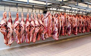 گوشت قرمز ارزان شد + قیمت
