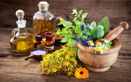 تاثیر شگفت انگیز این گیاهان بر درمان سرطان