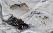 تفحص پیکر مطهر ۳ شهید در منطقه چنگوله