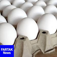 واردات تخممرغ متوقف شد