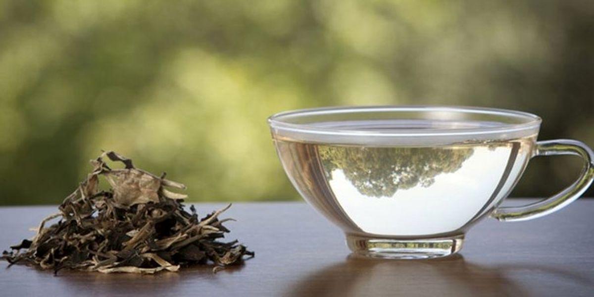 آشنایی با عوارض نوشیدن بیش از حد چای