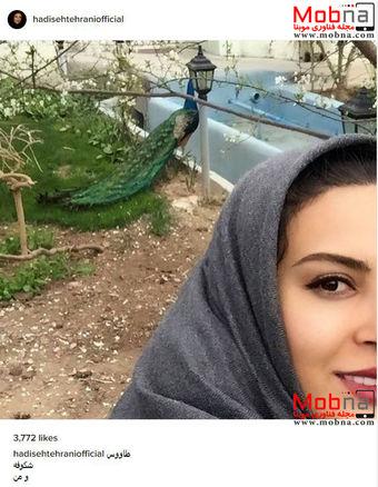 سلفی حدیثه تهرانی به همراه یک طاووس (عکس)