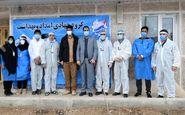 اصلاح و بهینه سازی برق روستای «گلین» در استان کرمانشاه انجام شد