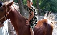 اعضای بدن پسر بچه ۸ ساله قمی اهدا شد