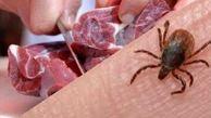 هشدار احتمال شیوع بیماری مشترک تب کریمه- کنگو در استان کرمانشاه