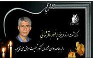 فیلم/ به یاد استاد باقرثنایی پدر خانواده درمانی ایران