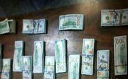 کشف ۲۰۰ هزار دلار بسته بندی شده از یک مسافر در فرودگاه مشهد + عکس