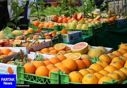 ۱۱۵۰ تن میوه شب عید از ۲۵ اسفند در قم توزیع میشود