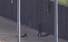 مجروحیت دو دختر نوجوان هنگام پرش از روی دیوار مرزی آمریکا +فیلم